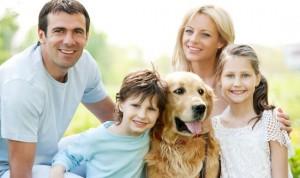 собака и семья