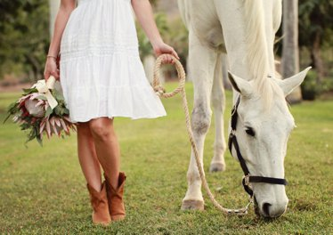 Ноги женщины и голова лошади