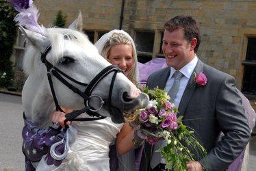 Жених, невеста и белая лошадь